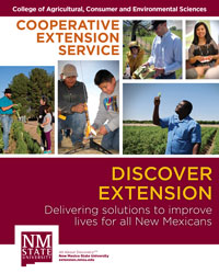 Image of Discover Extension booklet